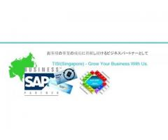 SMEs - ERP Implementation, Support and Corporate development