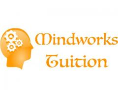 Mindworks Academy Pte Ltd